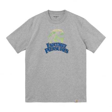 Carhartt WIP S/S Earthly Pleasures T-Shirt Grey